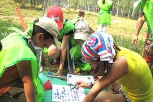 Игра повелители стихий в детском лагере